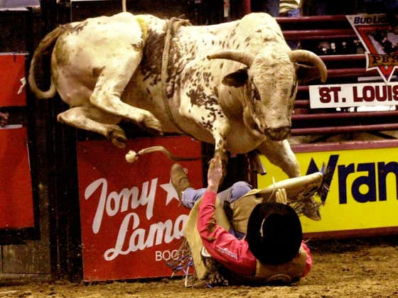 Die Trying Is Back: Its Time To Ride a Bull