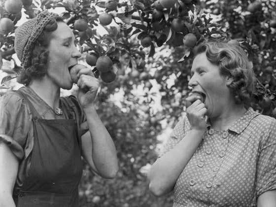 Weak 4... get the apple baskets ready