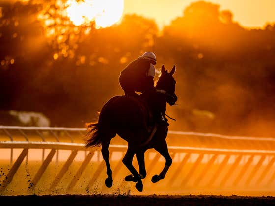 Saratoga Late Pick Five + Best Bets of the Day