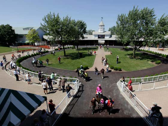 It Sounds Like Arlington Park Race Track Is Done And That Sucks