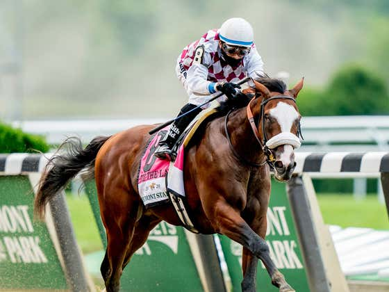 Horse Racing Has A New Superstar And His Name Is Tiz The Law