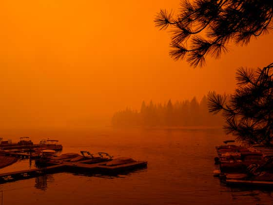 The Gender Reveal Wildfire Disaster Has Helped Turn Northern California's Sky Into Something Straight Out Of Mars