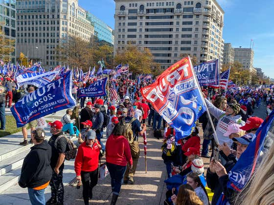 Hard Factor 11/16: MAGA March, Covid Update, Pigeon Racing, Hunting For Treasure, Elon's Covid Woes, Stolen Trees, Fire Ants & More