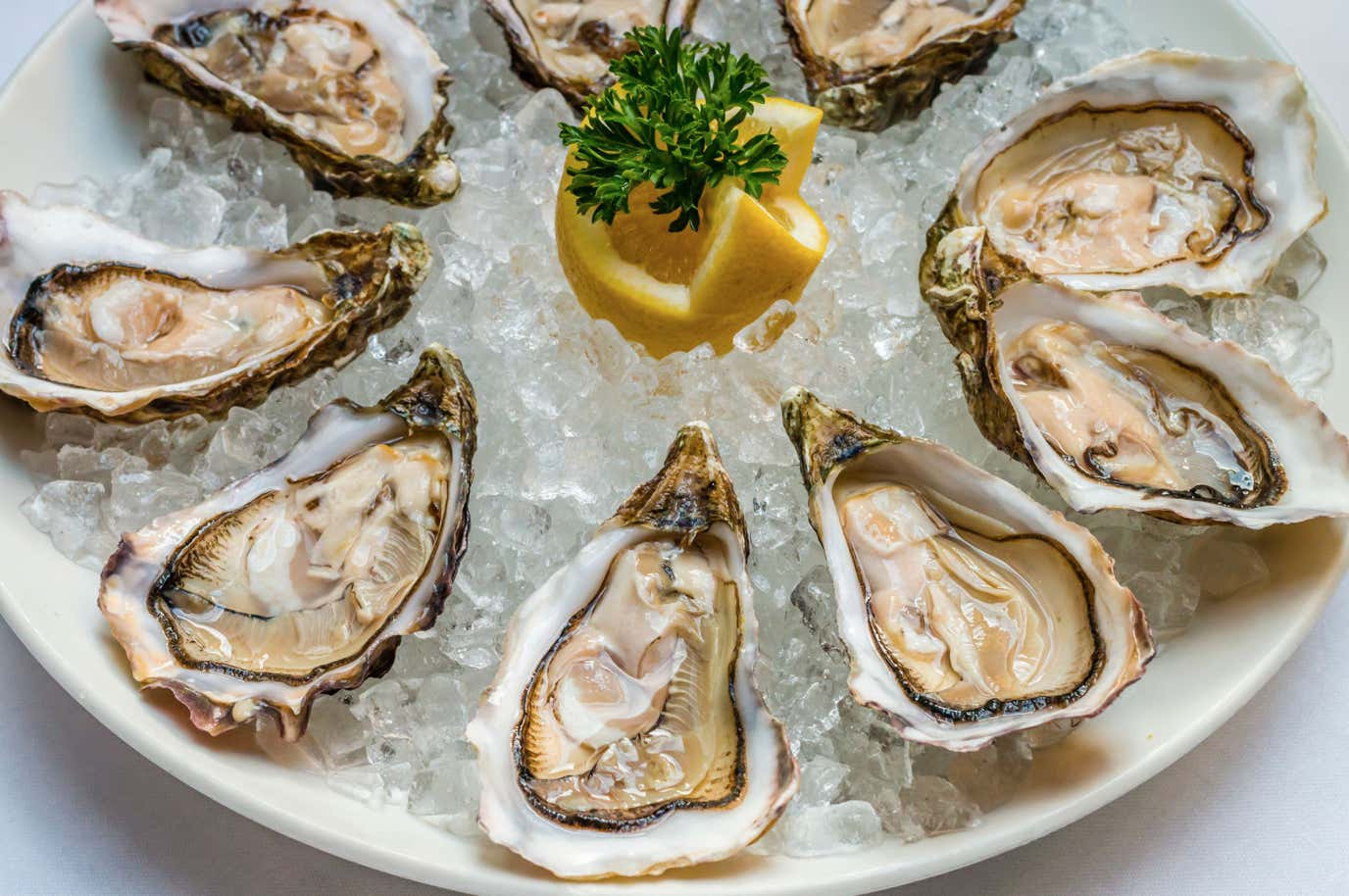 Hey Guess What? Oysters Are The Most Disgusting Food To Ever ...