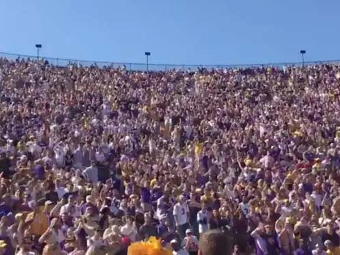 The LSU Fan Section Is Now Singing Neck Without The Music