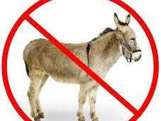 Sorry about that donkey thing earlier...
