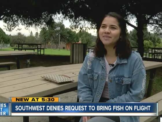 "College Girl Abandons ""Best Friend"" Pet Fish At Airport, Blames Southwest"