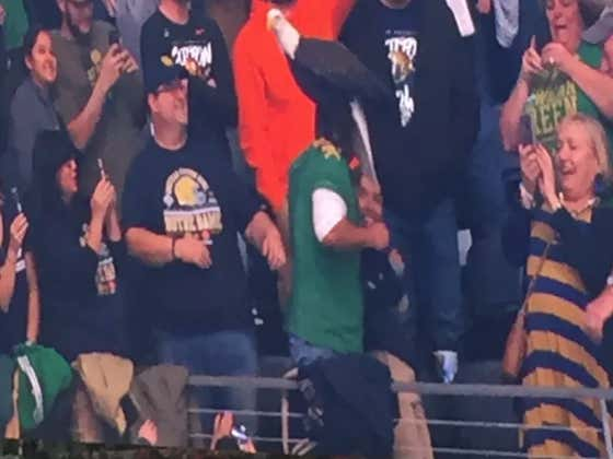 Bald Eagle Takes Detour, Lands On Notre Dame Fan Pregame