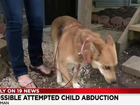 Shout Out This Very Good Girl In Ohio Who Prevented A Kidnapping At Her House