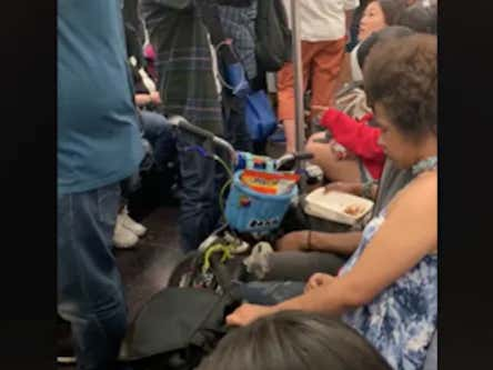 Shame On Everyone Who Let This Man Hand-Feed Rats Chinese Food On The Subway