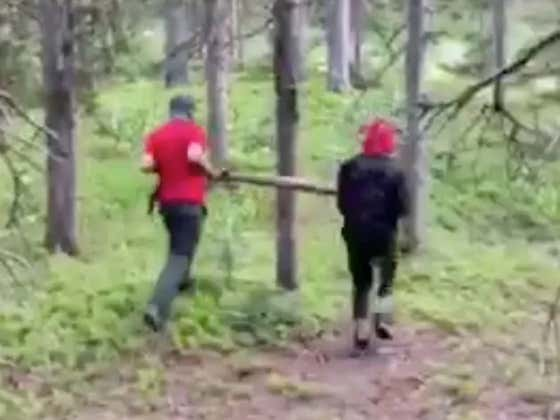 Two Idiots Get Knocked Out By A Tree