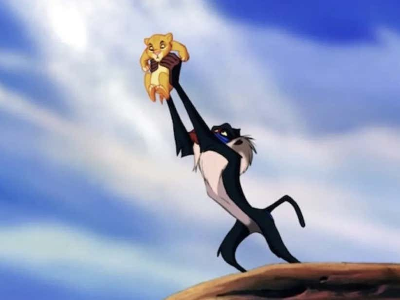 Wake Up With The Circle Of Life