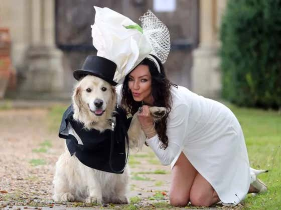 Model Marries Dog After 220 Failed Dates With Men