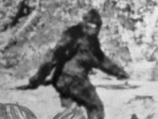 A Bigfoot Sighting is Blamed for a Shooting at a Campsite in Kentucky