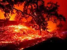 Hard Factor 10/29: Wildfire Hell, Gender Reveals Get Soft Cornered, Hero Dog Okay