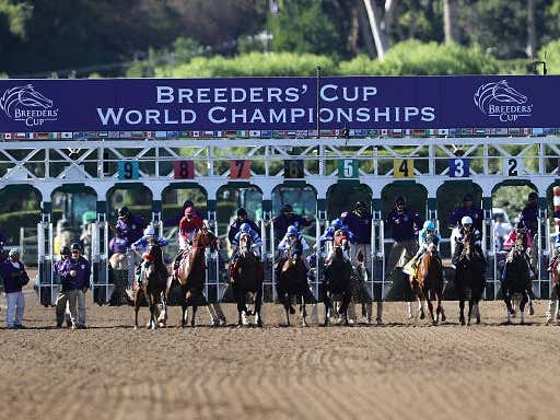 BlackJack and Lo Duca's Breeders Cup Day Two Cards